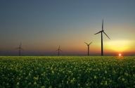 Avrupa Birliği Yenilenebilir Enerjide Teşviklerin Devamını İstedi