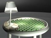 Enerji Üreten Masa   Biophotovoltaic Moss Table