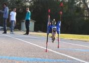 Dünyanın En Hızlı Koşan Robotuyla Tanışın   Robotlarla Bir Gün