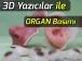 3D Yazıcılar ile Organ Basımı Artık Mümkün
