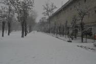 Abdullah Gül Üniversitesi | Tercih Rehberi