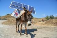 Eşek Sırtında Güneş Enerjisi | Çoban Çantası