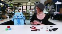 Diyot için D | ElektrikPort Çocuklar İçin Elektronik Eğitimi