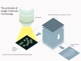 2014 Nobel Kimya Ödülü 'Süper Mikroskop'a Verildi