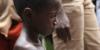 Ebola özellikle Batı Afrika'da çok fazla ölüme sebep oldu.