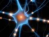 Beyin Aktiviteleri Kablosuz Olarak Takip Edilebilecek