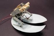 Hamam Böceğinden Esinlenilen Karasal Robot