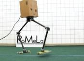 İki Ayaklı Robot Sistemi: NaBiRoS ve BALLU