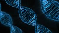DNA'ya Video Kaydedildi
