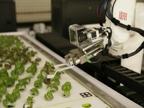 Geleceğin Çiftçileri Robotlar mı Olacak?