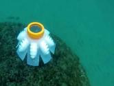 Robot Denizanası Geliştirildi