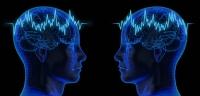 Beyinden Beyine İletişim Sağlayan Sosyal Ağ Kuruluyor