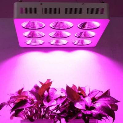 Tarımda UV LED Uygulamaları