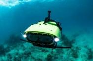 Sualtı Robotları Nesli Tükenmekte Olan Resifleri Kurtaracak
