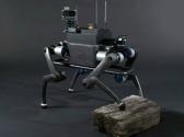 Yapay Zekayla  Çalışan  Robotik Köpek  Geliştirildi!