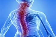 Omurilik Zedelenmesini Tedavi Eden İmplant Geliştirildi