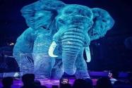 Hologram Teknolojisiyle Sirklerde Hayvan Kullanımı Sona Erecek!
