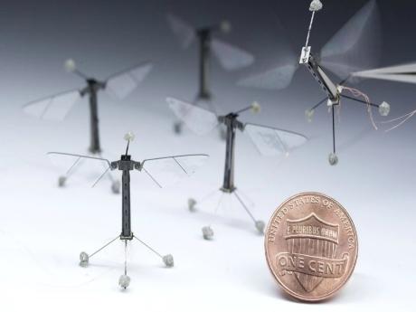 Robobee | Robot Arılarla Bir Gün