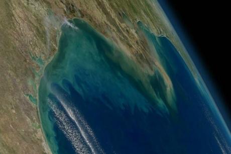 Kıyı Ekosistemleri Uzaydan İzlenebilecek