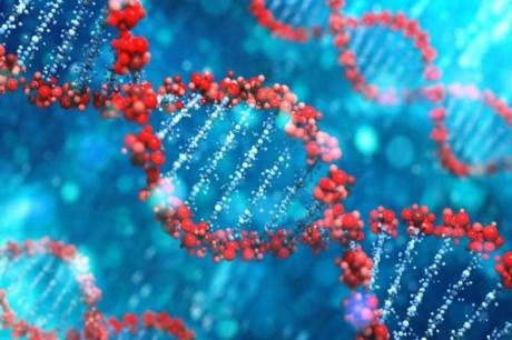Mıknatıslı İnsan Hücreleri Tasarlandı