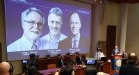 2019 Nobel Tıp Ödülü Açıklandı
