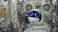 Boston Dynamics'in İlginç ve Sevimli 7 Robotu