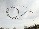 Drone'lar için Yapay Zeka Geliştirildi