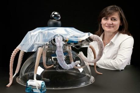 Ahtapotun Yapısından Esinlenerek Üretilen Robot | Octo-Bot