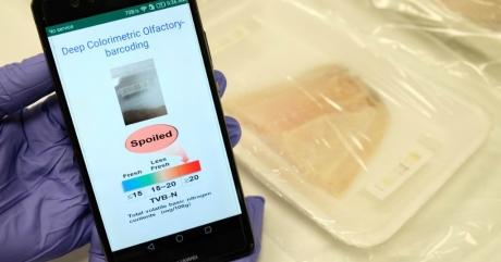 Gıdalarda Dijital Barkod Dönemi