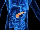 Yapay Organ Çalışmalarında Yeni Adım: Yapay Pankreas