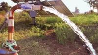 Danfoss Daha Verimli Ekin Sulaması için Türk Çiftçilere Güneş Enerjisi Toplamaya Yardımcı Oluyor