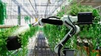 Yapay Zeka ile İnsansız Tarım