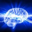 İnsan Beyni Kullanılarak Elektrik Üretildi