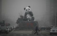 Çin'in Kömür Çılğınlığı