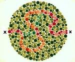 Renk Körlüğüne Yeni Bir Çözüm