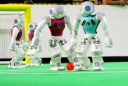 RoboCup 2013 Sonuçlandı