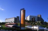 10) National University of Singapore (NUS): Singapurda bulunan NUS, 84.10 puanla ilk 10 listesinin ilk üyesi oluyor. Sadece elektrik-elektronik mühendisliği alanında değil birçok alanda dünyanın en iyi üniversitelerinden biri sayılıyor. Uluslararası ortamıyla da tanınıyor.