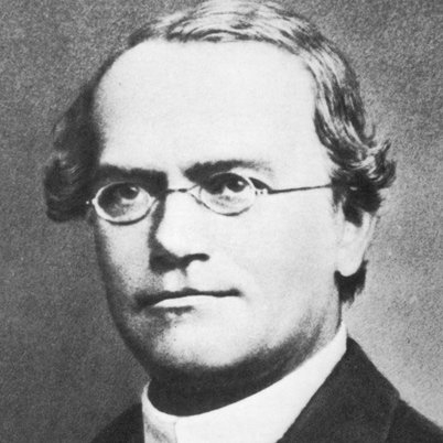 1900   Mendel yasalarının doğruluğu deneylerle kanıtlandı. 1822'de Avusturya'da doğan Gregor Mendel 1856 yılında kalıtımla ilgili çalışmalarına başlamıştı. Bezelyelerle yaptığı deneyler sonunda kalıtımın yasalarını ortaya atan Mendel, kalıtım biliminin (genetiğin) doğmasına olanak sağlamıştır.