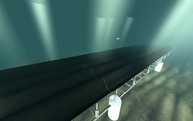 Muddy Seabeds: Kaliforniya Üniversitesi Berkeley araştırmacılarının deniz dibindeki kumlardan ilham alarak geliştirdiği bu halı sistemi, kauçuk boruların dalgaların hareketi ile aşağı ve yukarı yönde hareket etmesi  temeline dayanıyor. Hareket esnasında sistemin altında bulunan hidrolik akışkan basıncı motoru bu hareketleri absorbe ederek elektrik üretiyor. Geliştirme çalışmaları devam eden bu sistemin, 1 metrekarelik modelinin 2 evin elektrik ihtiyacını karşılayabileceği söyleniyor.