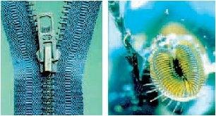 Fermuar; sinek ağzının birbirine geçişli kilit sisteminden ilham alınarak yapılmıştır.