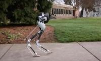Cassie robot: Bu rıobot kelimenin tam anlamıyla yarı insansı robot olarak nitelendiriliyor. Bu robotun vücudunun sadece yarısı var. Cassie robotun geliştirilmesinin temelinde ise iki ayak ile yürümenin fiziğini yazılımsal olarak uygulama çalışmaları yer alıyor.