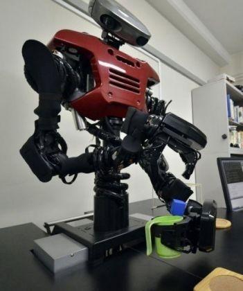 Kendini organize edebilen artımlı sinirsel ağ (SOINN) robotlardan istenilen şeyi yapmaları için kendi bilgilerini kullanmalarını sağlayan bir algoritma. SOINN kendisine tutarlı bir biçimde verilen komutları yerine getirmek için etrafı inceleyip gerekli bilgiyi toplayabiliyor.