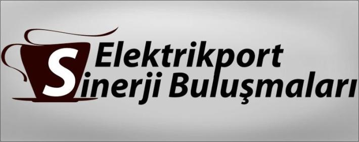 elektrik port sinerji buluşmaları ve proje danışmanlık desteği