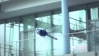 Festo'dan Helikopter Sinek | BionicOpter