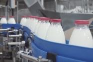 Danfoss Süt Hikayesi